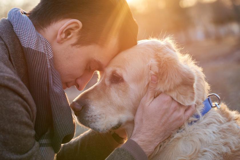 Senki mással nem élnek át ilyen kötődést a férfiak: kiderült, mennyire fontos számukra a kutya