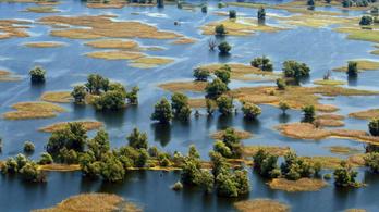 Magyarország is kérte felvételét az UNESCO Bioszféra Rezervátumba