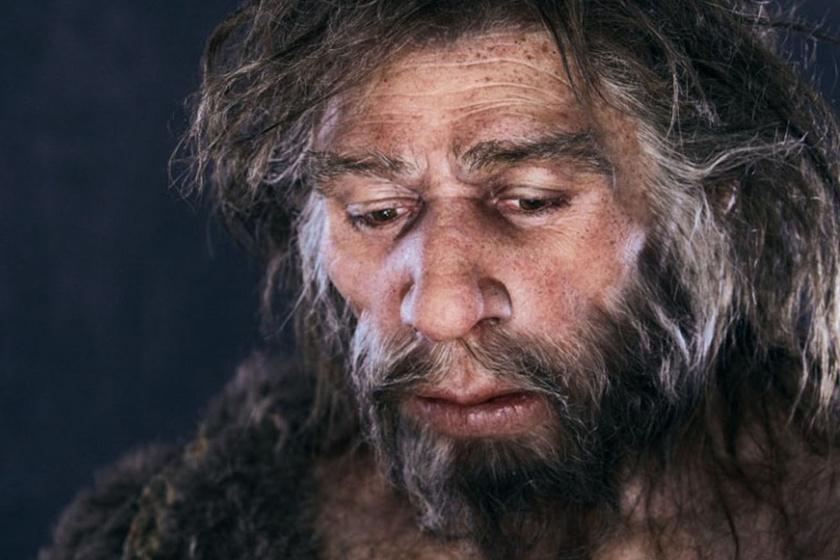 Elizabeth Daynes munkája: az élethű arcmás a szóban forgó Neander-völgyi-leletről készült rekonstrukció.
