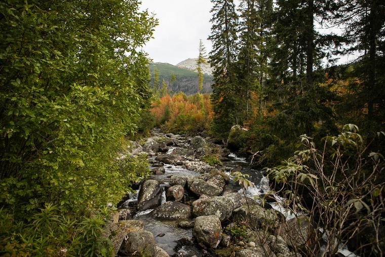 Jobbról és balról egy kis folyó keresztezi az utunkat