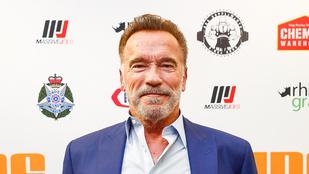 Arnold Schwarzenegger közös edzős képet posztolt a fiáról és magáról