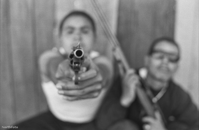 A bandák tagjai számára mindennapos volt az erőszak