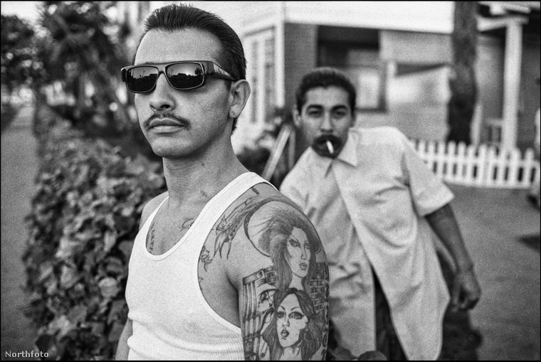 Még egy kép a White Fence Gang tagjairól
