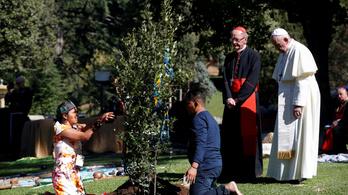 Amazóniai őslakosokkal ültetett fát a Vatikánban Ferenc pápa