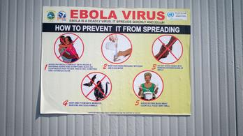Már a betegek kétharmada túléli az ebolát