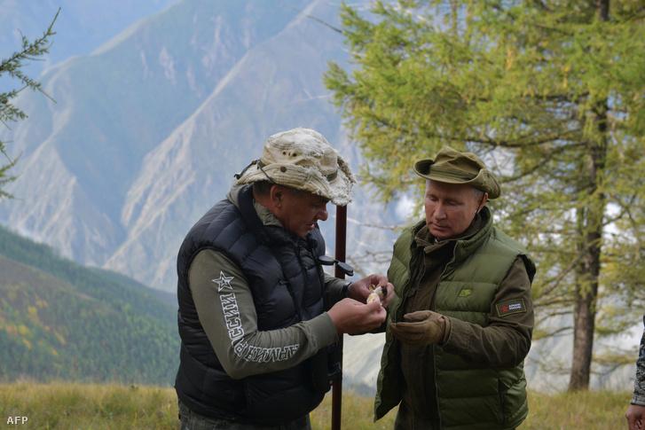 Putyin és Szergej Sojgu