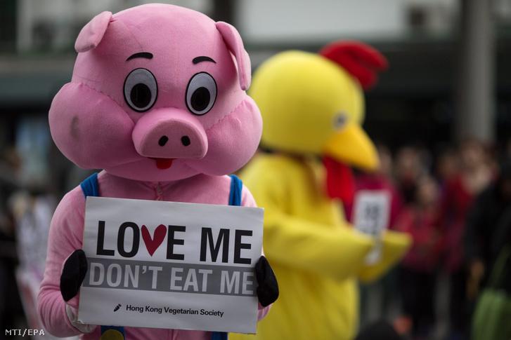 """2015-ös tüntetés Hongkongban """"Szeress, ne egyél meg!"""" feliratú transzparenssel"""