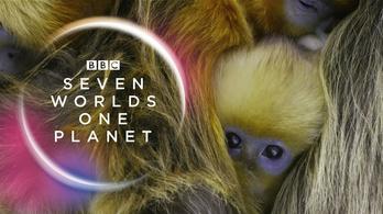 Bemutatták Attenborough új sorozatát