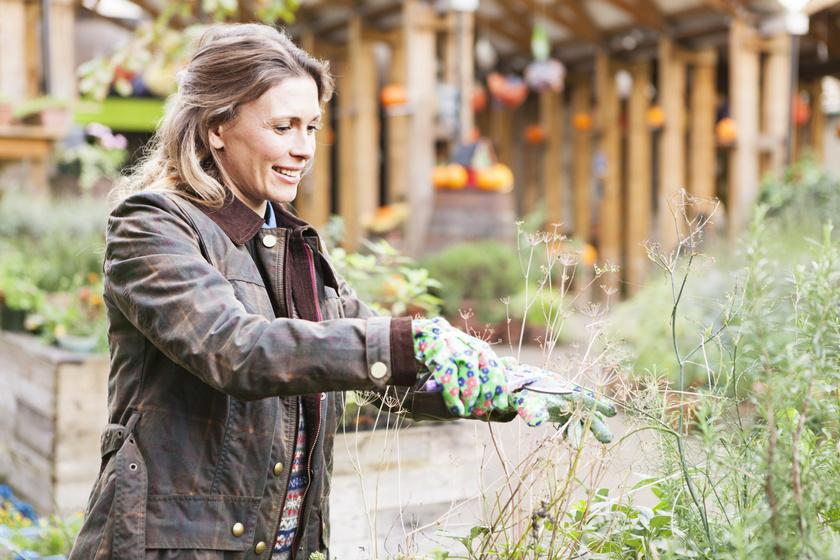 Az embernek saját magára is oda kell figyelnie a kerti munkák alatt. A kertészkedők nagyobb eséllyel fertőződnek meg tetanusszal, ami nyílt seben keresztül jut be, ezért nem árt kesztyűt viselni kertészkedés közben. Ezenkívül a pangó vizekben Legionella is tanyázhat.