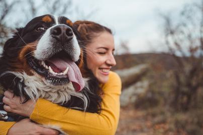 kutya-szeretet