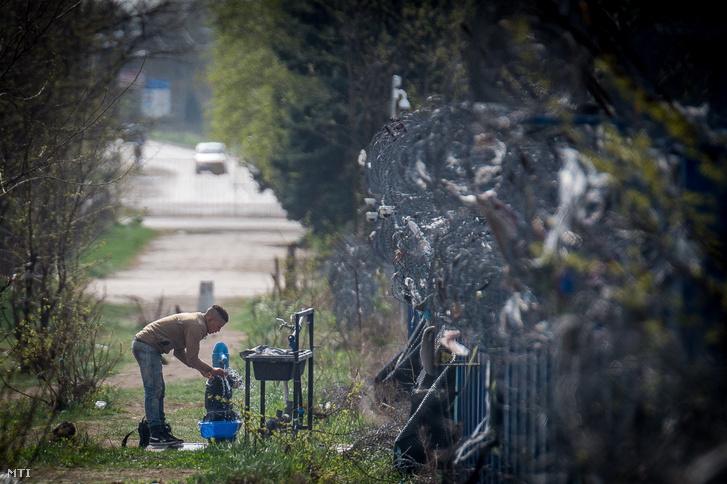 Egy menekült a magyar-szerb határ szerb oldalán, a vajdasági Kelebiánál, a tompai határátkelő közelében.