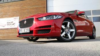 Csőd ellen kapott 220 milliót a ceglédi kézilabda, Jaguarra költötték