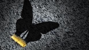 Krízis: rajtunk múlik, hogy előnyünkre fordítjuk, vagy az áldozatává válunk