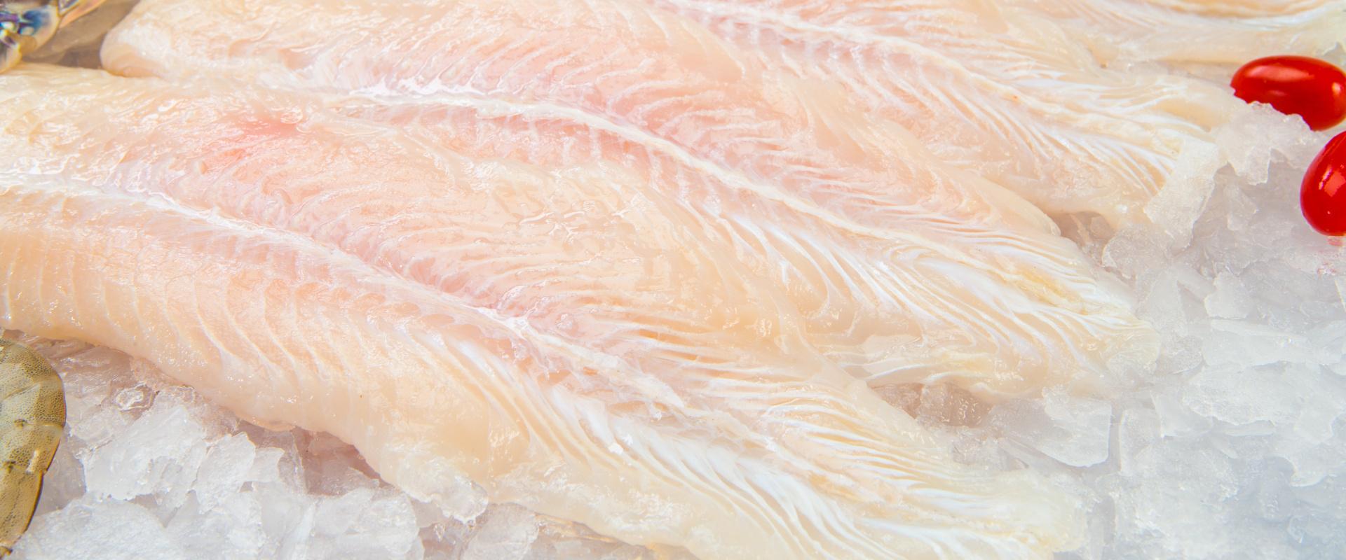 fagyasztott hal