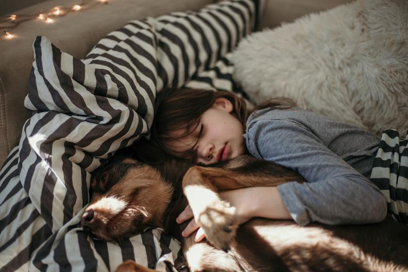 Tényleg árthat a gyereknek, ha a házi kedvenccel alszik? Sorra vettük a problémákat