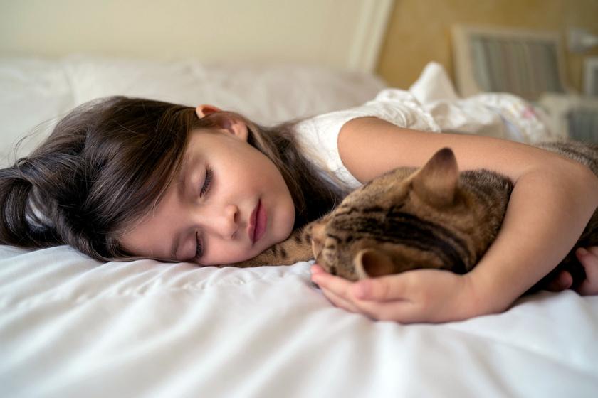 gyerek-macskaval-alszik