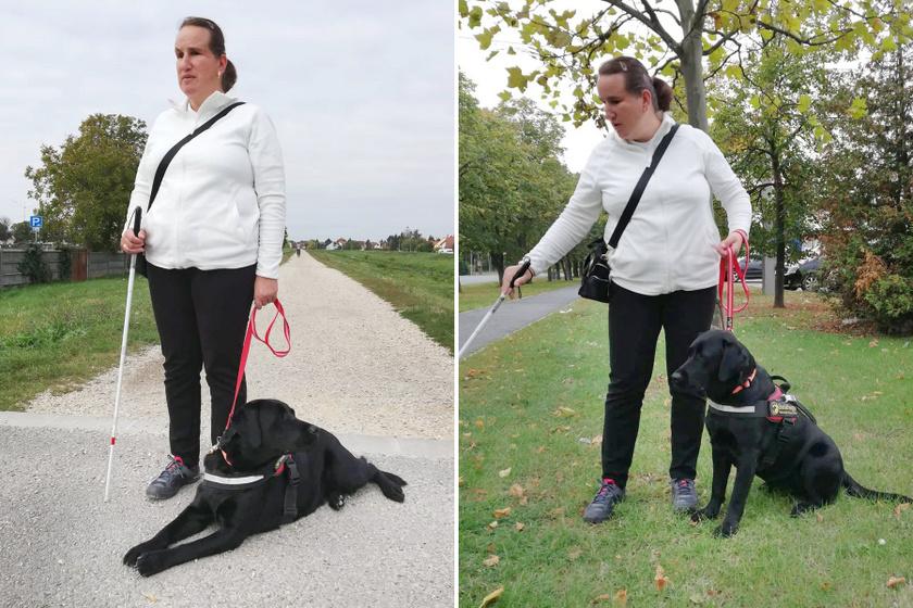 Csodálatos módon talált rá kutyájára a látássérült nő - Megható a történetük