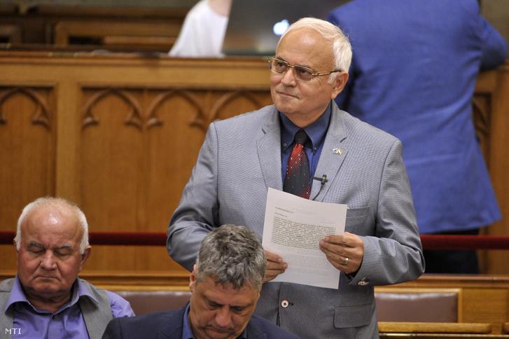 László Imre, a DK képviselője az Országgyűlés plenáris ülésén 2019. július 1-jén.