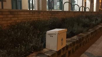 Üres, de plombált mozgóurnát találtak az utcán Budakeszin