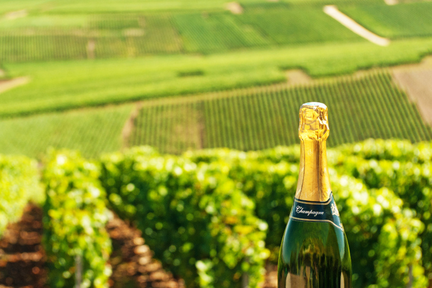 champagne régió