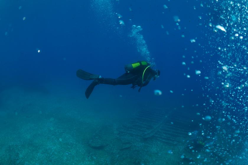 Egy hajóroncshoz merültek a búvárok: nagy meglepetés várta őket a víz alatt