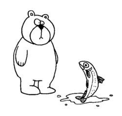 allatok medve hal