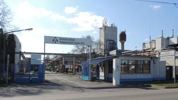 Kilencmilliárdos megbízást nyert Tiszavasváriban Mészáros cége