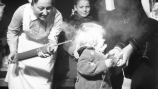 Véletlen került elő újra a nácik rovarirtó csodaszere