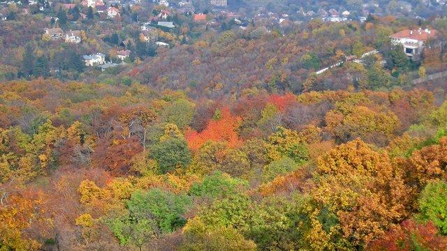 Hogyan túrázz ősszel?