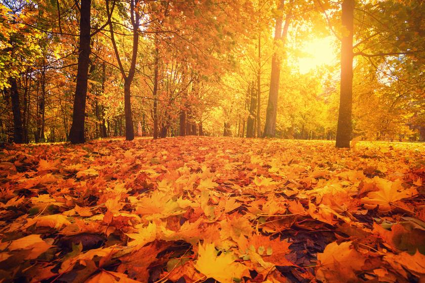 Október legmelegebb napjai jöhetnek: 28 °C is lehet a héten