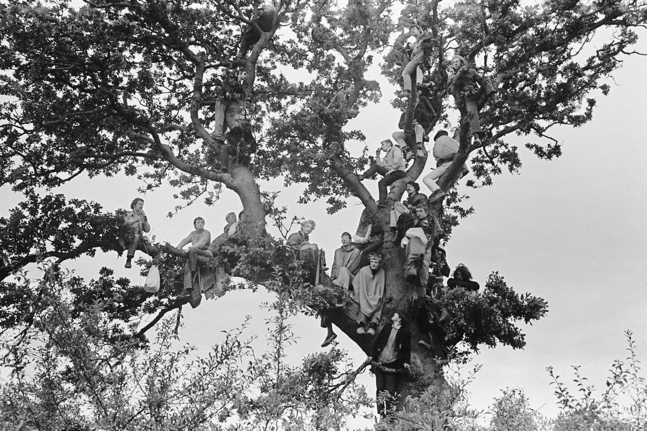 Jones célja az volt, hogy megmutassa mitől olyan különleges angolnak lenni, milyen Anglia igazi arca, és hogy mi az, ami annyira angol, hogy az ember kapásból meg tudja mondani a képekre pillantva, melyiki országban készülhetett a fotó. Ezen a képen egy csapat fesztiválozót látunk az 1968-as  Isle of Wight Fesztiválon.