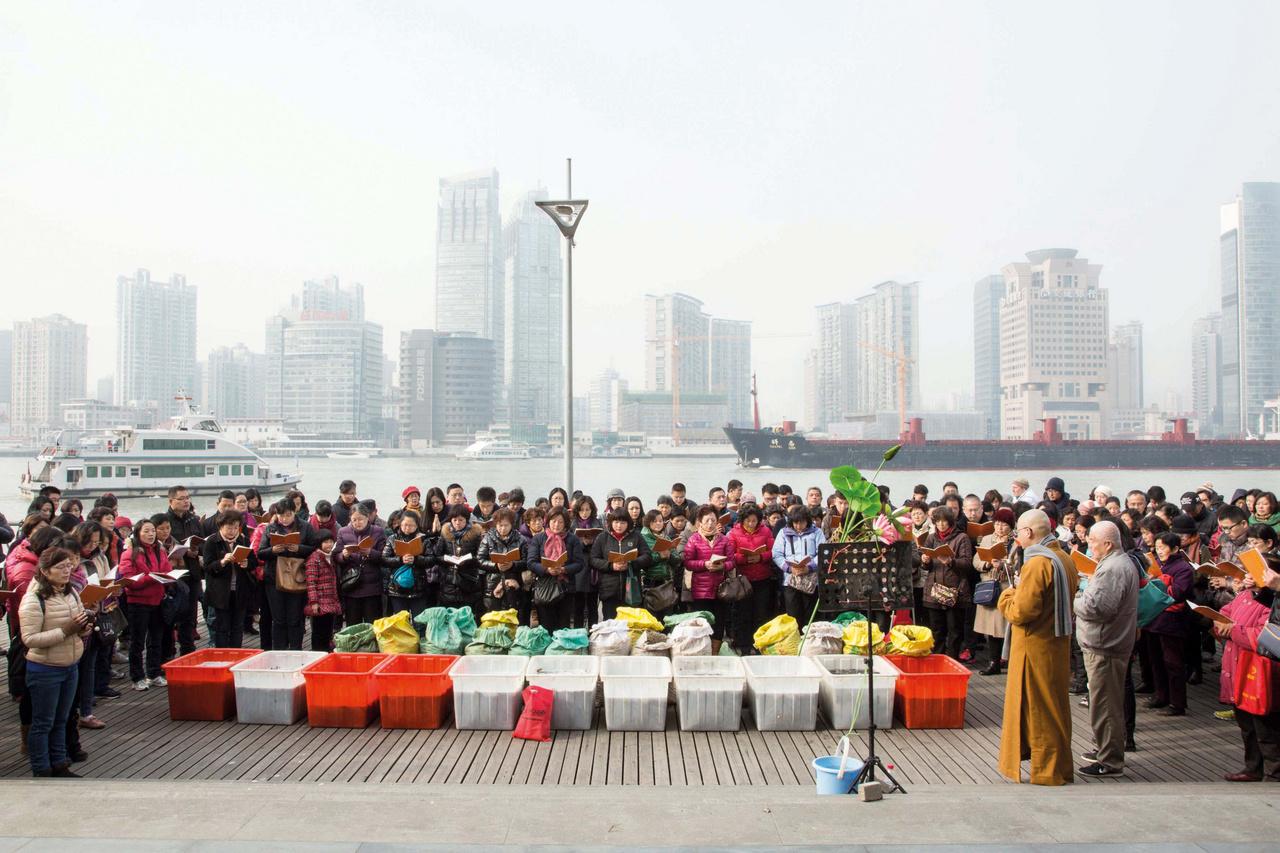 A hagyományos kelet-ázsiai buddhista gyakorlat szerint jó karmát jelent a fogságban tartott állatok szabadon engedése. Habár az elmúlt években a szokás gyakorlása drasztikusan visszaesett, a közösségi média segítségével és az online pénzadományozással újra életre tudták kelteni. Ilyenkor lakosok százai gyűlnek össze, hogy elengedjenek 3000 dollár (közel 900 ezer forint) értékben vásárolt halakat, amiket reggel szereztek be a piacról. A vallási okok mellett ez azért is hasznos, mert ezáltal a vizek élővilága is gazdagszik (aminek a horgászok örülnek), illetve az emberek összetartozását is erősíti a közös esemény.