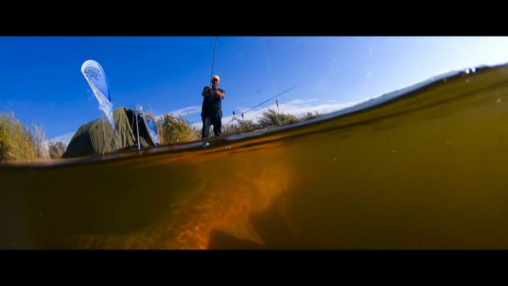 Elképesztően látványos horgász/természetfilm készült egy magyar horgásztavon