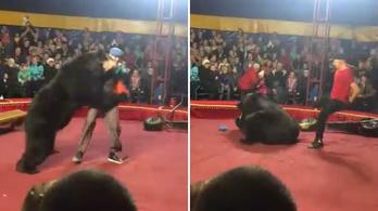 Medve támadt az idomárra egy orosz cirkuszban