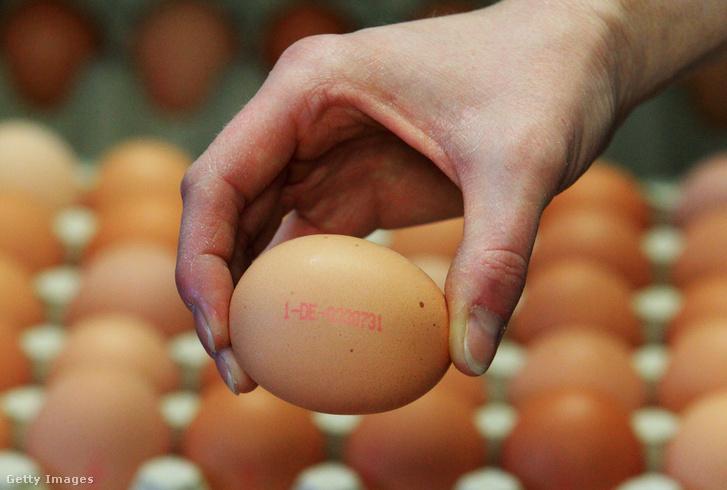 A tojásokon található kód, amelyből kiderül a tojás származása és a tartás módja is.