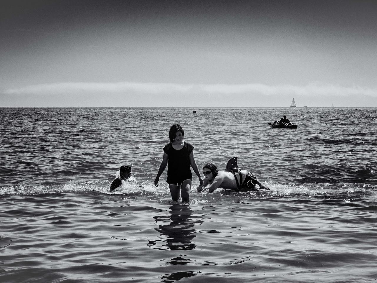 A Weymouth strandon Kallan éppen azt játsza, hogy ő cápa. Barátai Duja és Jaffa elkísérték az óceánhoz.