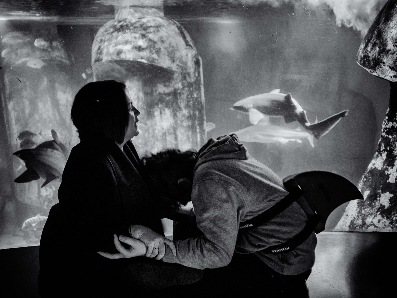 Kallan és édesanyja Nicola a londoni akváriumban figyelik a cápákat. Az állatok hullámzó mozgása megnyugtatja az autizmussal élő Kallant. Sokat jár az akváriumba, és mindig cápás öltözetben érkezik.