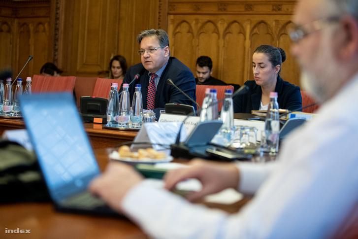 Vejkey Imre a bizottság kormánypárti elnöke