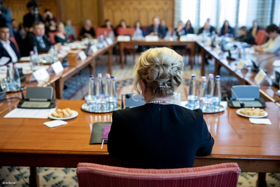 Handó Tünde meghallgatása az igazságügyi bizottság ülésén