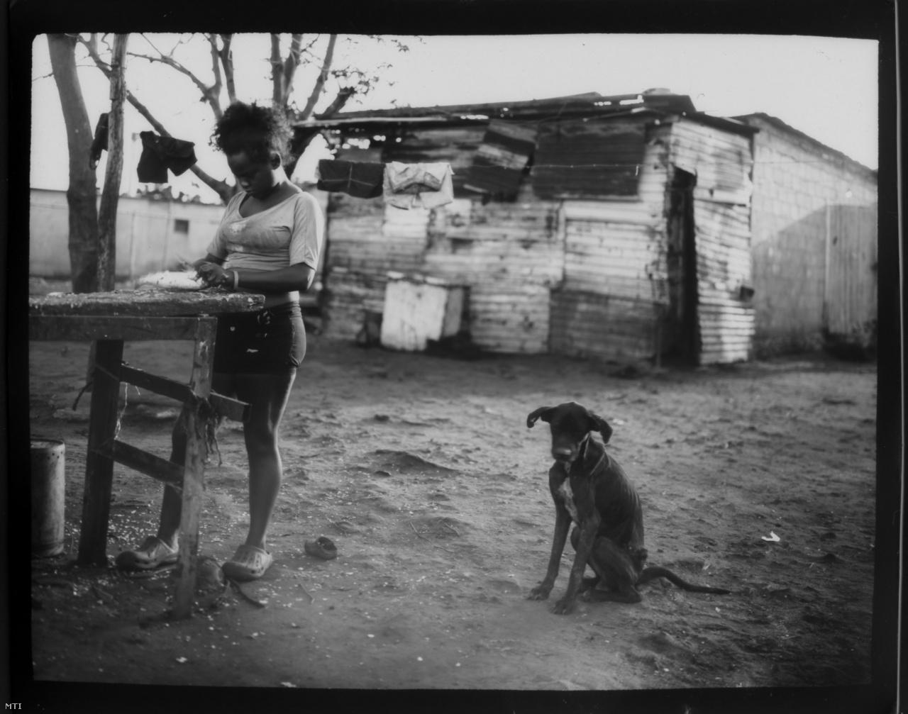 Fabiola Elizalzabal azokról a halakról próbálja lepucolni az olajat, amelyeket apja fogott ki a Maracaiboból.