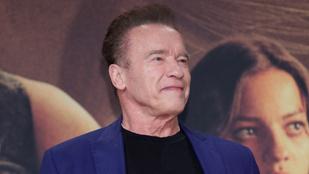Schwarzenegger Andy Vanjaként említi Andy Vajnát egy friss interjúban