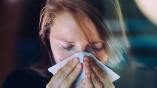 Ezeket teheted, ha elkapott az influenza: profi gyógymódok otthonra