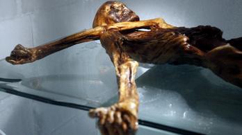 Briofiták árulkodnak Ötzi utolsó útjáról