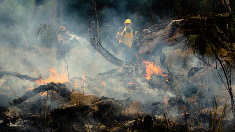 A világrendről is szóltak az amazóniai erdőtüzek