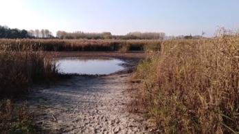 Eltűntek a Fancsikai-tavak