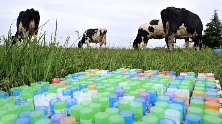 Az EU gazdákat kötelez homeopátiára