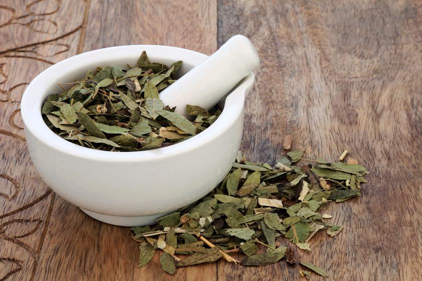 gyógynövény fogyókúra tea senna levelek