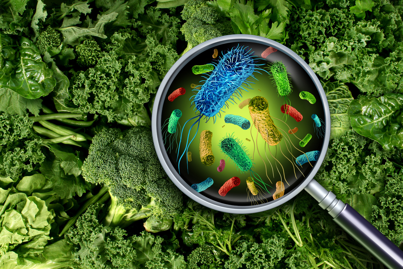 mikrobák az élelmiszeren
