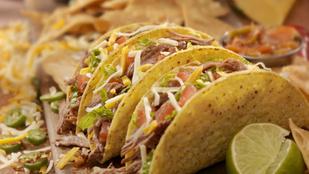 Taco marhahússal és egyéb állatfajtákkal