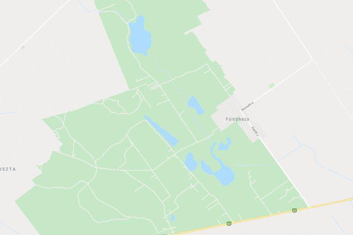 A Fülöpháza melletti tavak a Google Maps rajzán és légi fotóján. Fenn a Kondor-tó, lenn a szikes székek (helye)